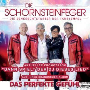 Die Schornsteinfeger - Dann spielt der DJ dieses Lied